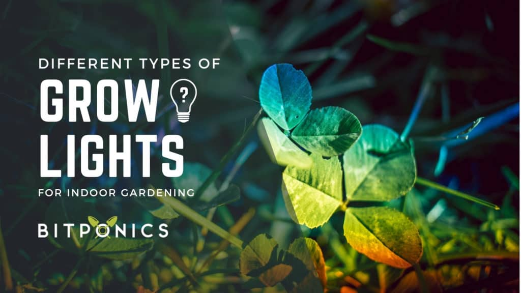 What Are the Different Types of Grow Lights?
