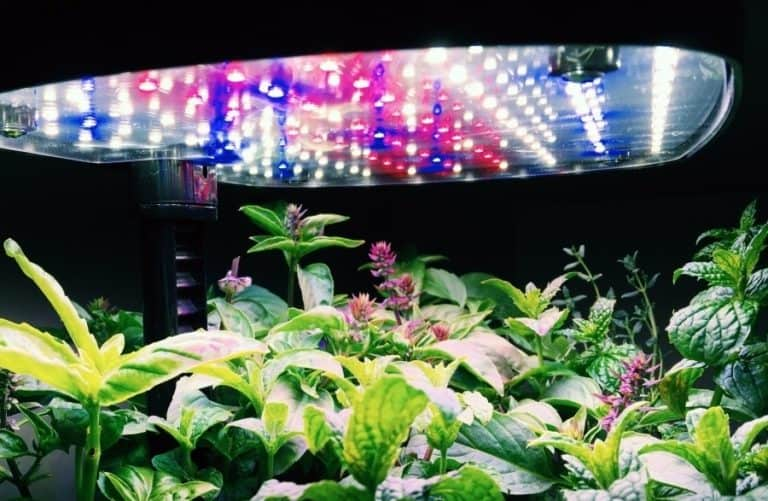 How to Build a DIY Grow Light System for Indoor Plants