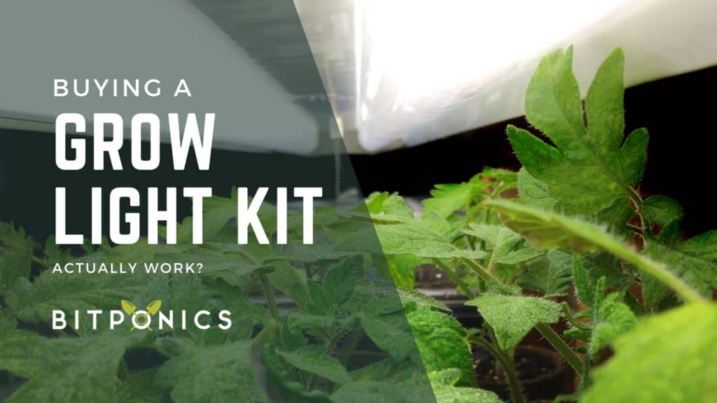 Investing in a Grow Light Kit