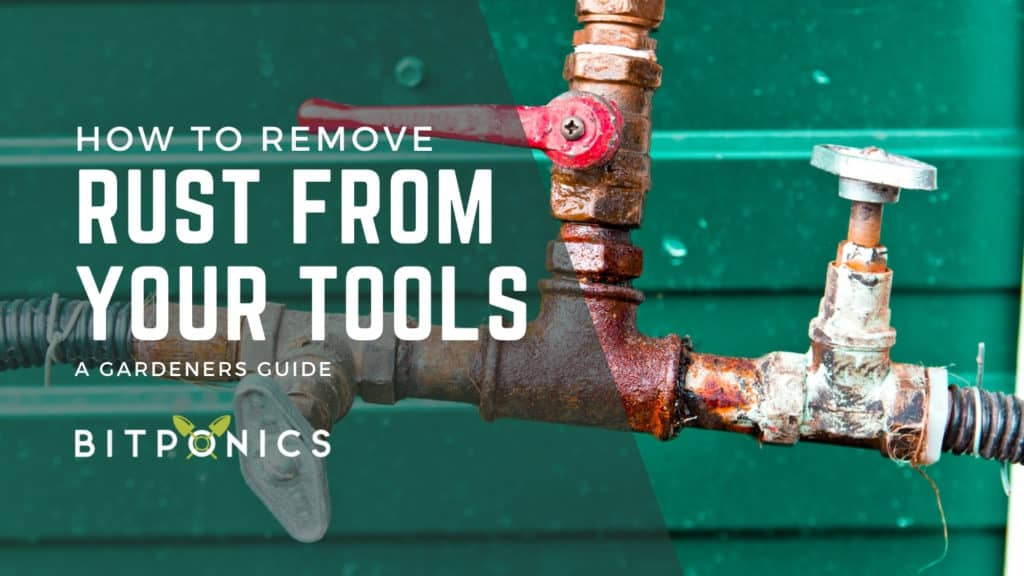 How to Remove Rust From Tools Without Harmful Chemicals