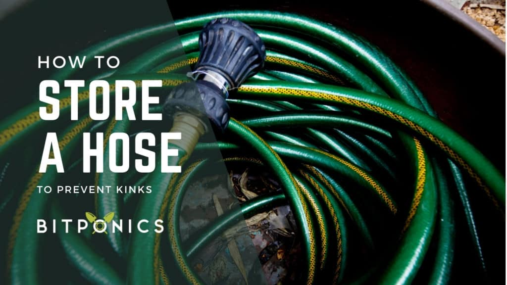 Best Way to Store a Garden Hose for Reducing Kinking