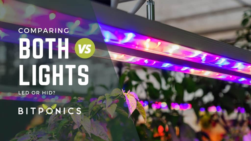 The Differences Between LED and HID Lighting