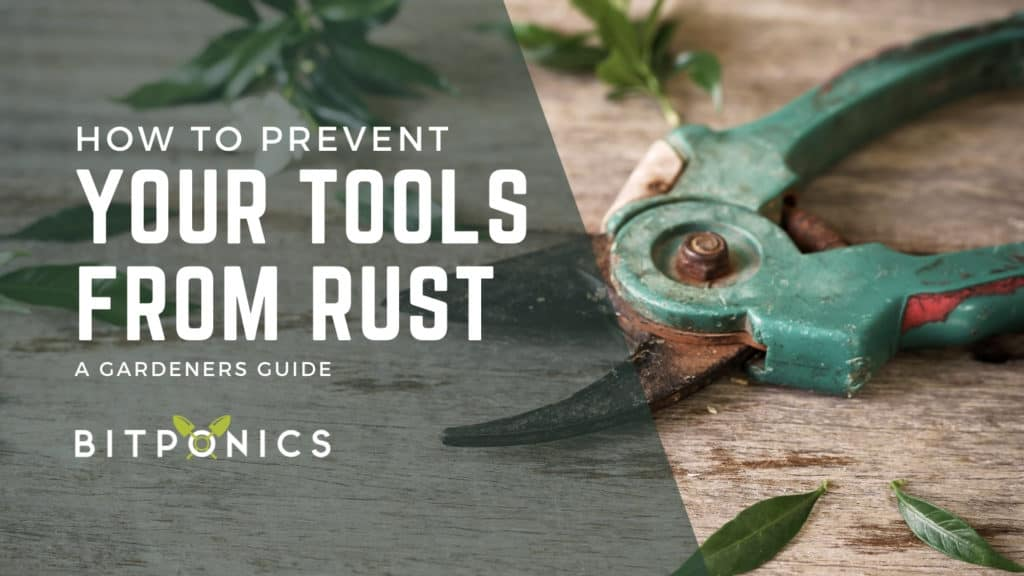 How to Prevent Tools from Rusting