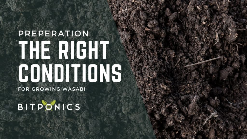 Creating the Right Conditions