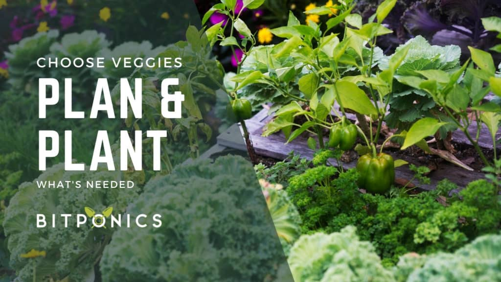 Choose The Vegetables You Are Planning On Planting.