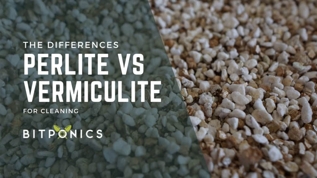 Main Differences Between Perlite and Vermiculite