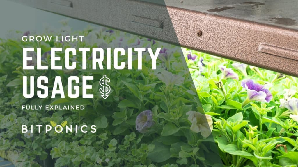 How Much Electricity Do Grow Lights Use?