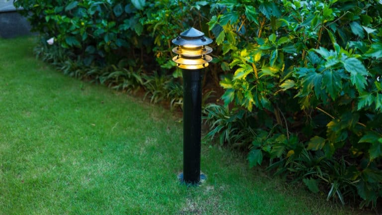 How to Clean Outdoor Solar Lights in 5 Easy Steps