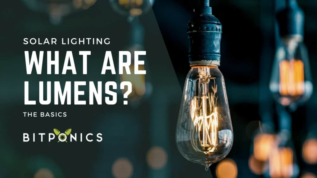 What are Lumens