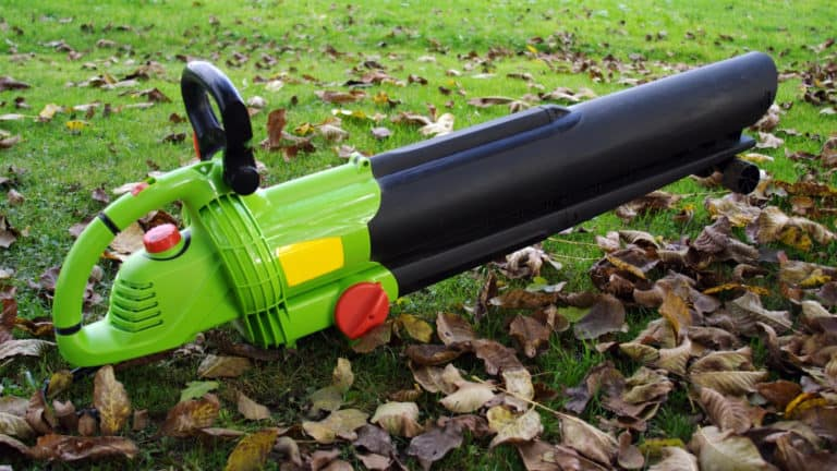 7 Best Cordless Leaf Blowers (Battery-Powered)