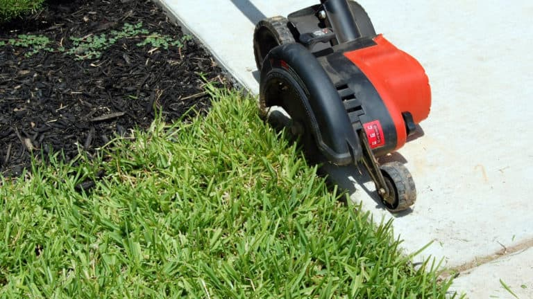 What Is The Best Edger For Your Lawn?