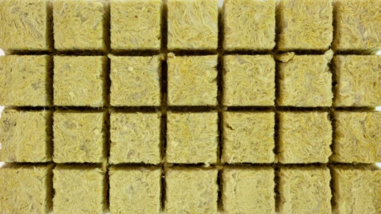 Can I Use Rockwool Insulation For Hydroponics?