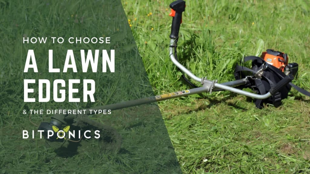 How to choose the best lawn edger.