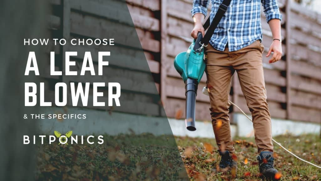 How to choose the best cordless leaf blower.