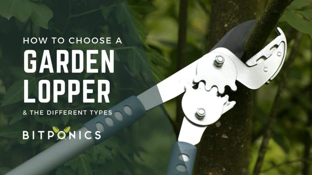 How to choose the best garden loppers.