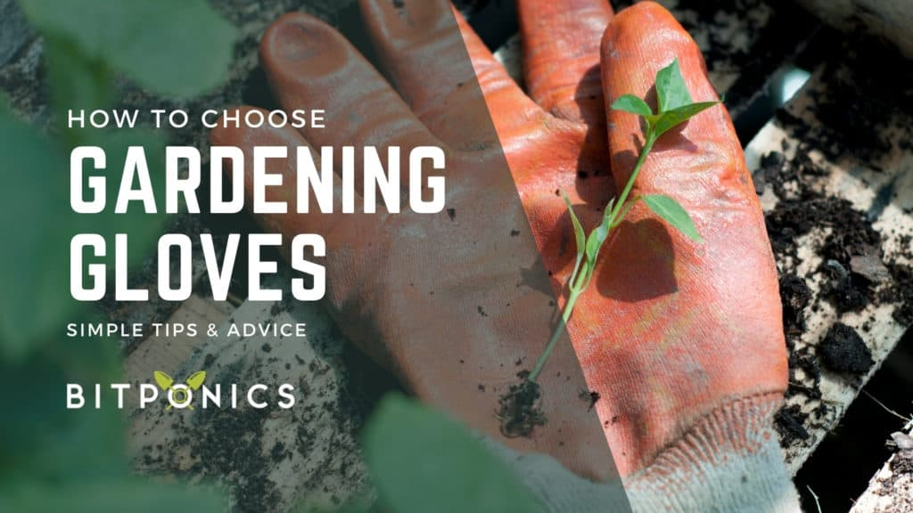 How to choose the best gardening gloves.