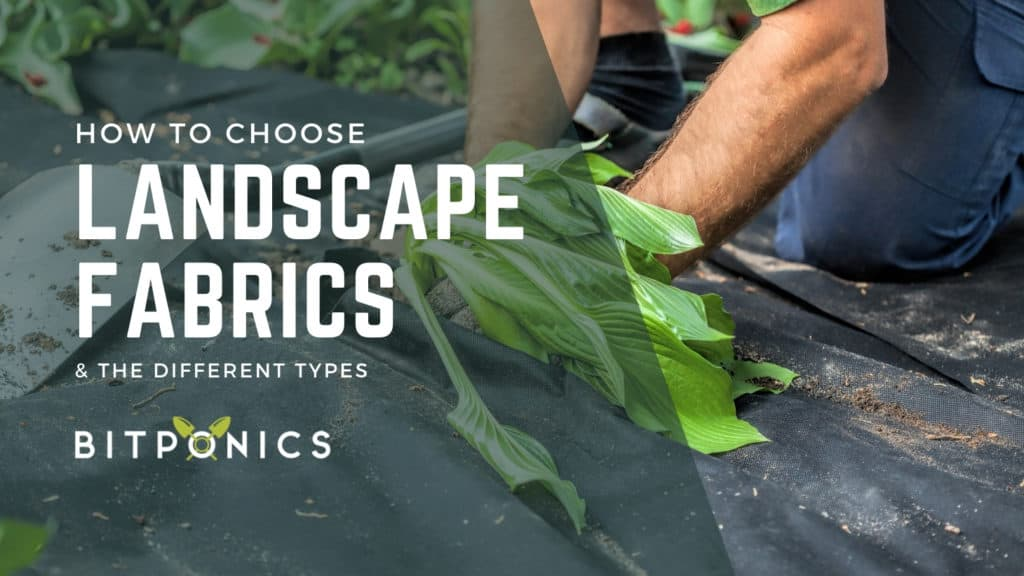 How to choose the best landscape fabric (weed barrier)