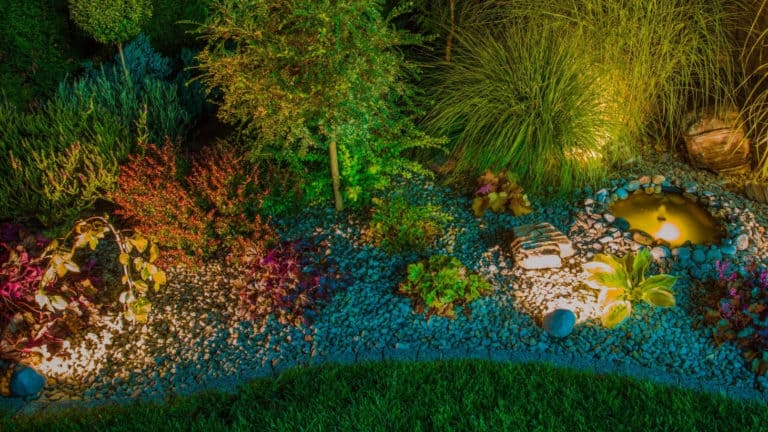 Outdoor Solar Lights vs. Electric: What's Should You Use?