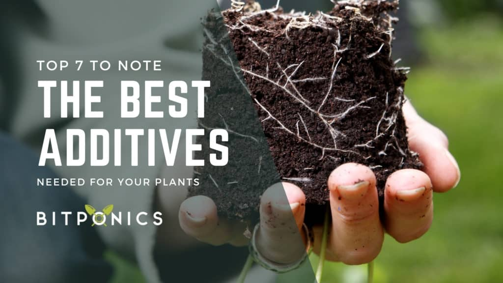 Picking the Best Additives