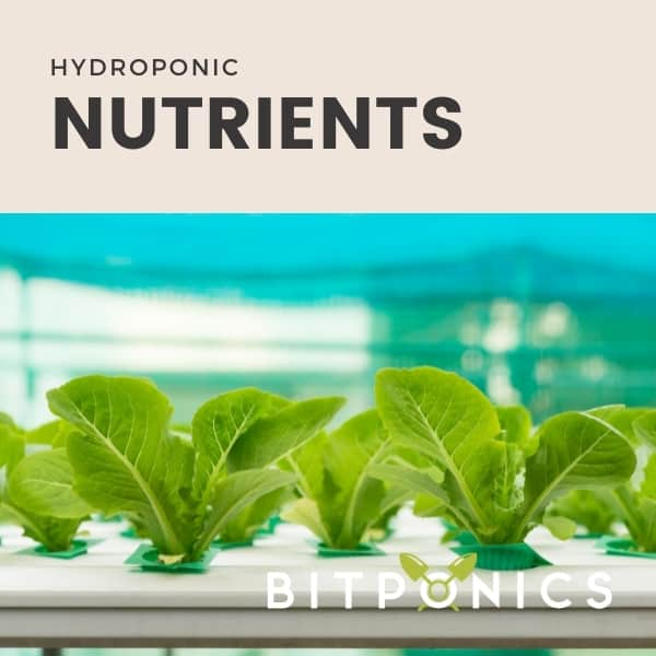 Hydroponic Nutrients.